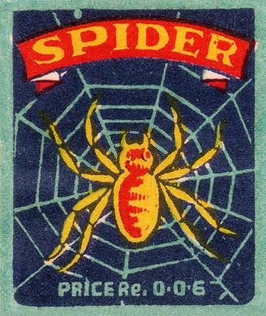 020814_spider.jpg