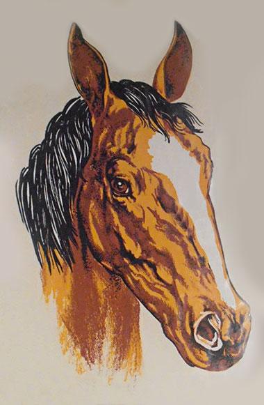 071514_horse_head.jpg