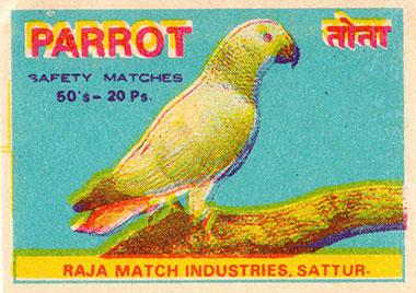 080414_parrot.jpg