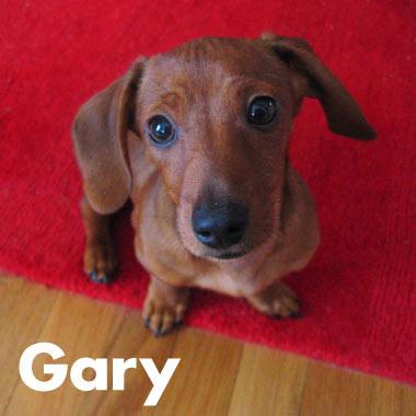 080610_goodbye_gary_03.jpg