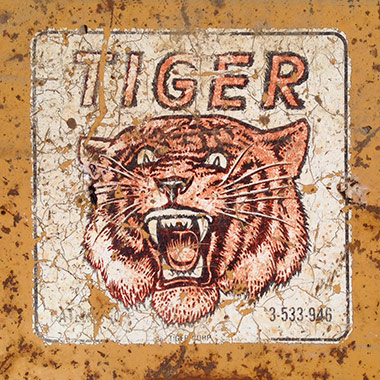 082415_brian_ripp_tiger.jpg